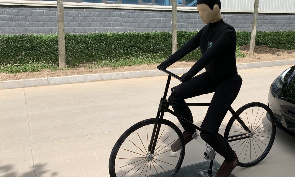 Bicycle Steve 1